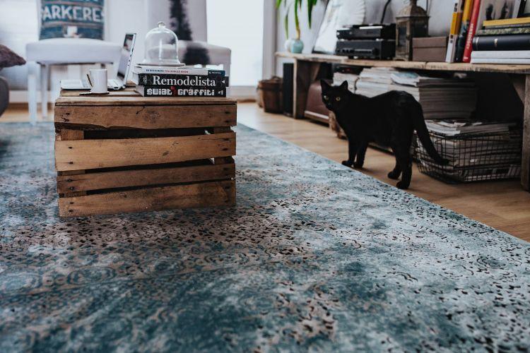 salon tapis bleu table bois